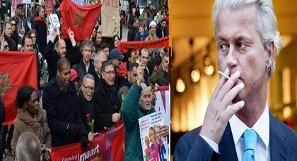 مغاربة هولندا يطالبون بالمشاركة في الانتخابات البرلمانية للحسم مع اليمين المتطرف