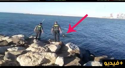 ثلاثة مهاجرين مغاربة يتسللون من بني أنصار إلى مليلية سباحة قبل أن يجدوا الحرس المدني في انتظارهم