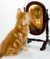 كيف تكتسب الثقة بنفسك