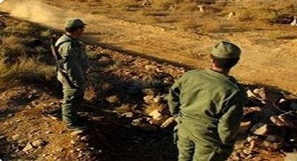 ساكنة شبه الجزيرة بأركمان تحرر شكاية ضد استعمال القوات المساعدة للكلاب الضالة المهددة لسلامة أطفالها