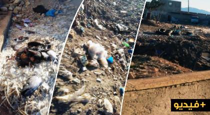 بالفيديو.. ساكنة حي النسيم بمدينة بن طيب تعيش وضعا بيئيا كارثية بسبب إنتشار النفايات