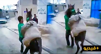 """فيديو يوثق تعذيب """"حمار"""" بتمسمان يثير موجة سخط على صفحات التواصل الاجتماعي"""