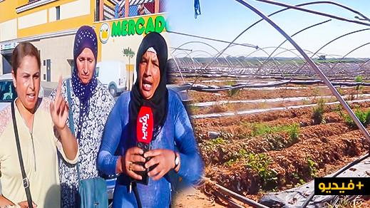 بالفيديو.. هذا ما قالته بعض العاملات المغربيات حول  تعرضهن للتحرش بضيعات الفراولة الإسبانية
