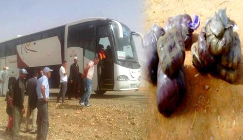 """جمارك الناظور تضبط كمية مهمة من مخدر """"الطابا"""" على متن حافلة لنقل المسافرين"""