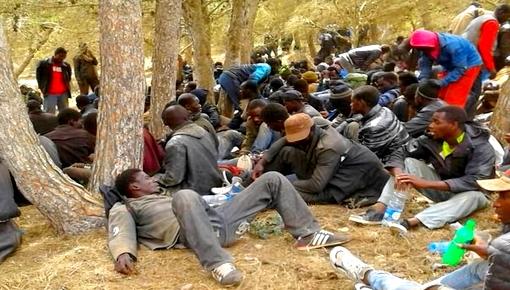 السلطات الأمنية تشن حملات تمشيطية واسعة تستهدف الآلاف من المهاجرين الأفارقة بمناطق الريف