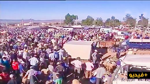 سوق الأغنام بزايو.. عرض الأضاحي متوفر بكثرة والأثمنة  في المتناول