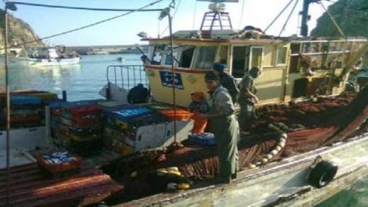 """ميناء الحسيمة: تفريغ أزيد من 164 طنا من أسماك """"الميرفا"""" وتصديرها خارج الإقليم للمعالجة والتصبير"""