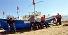 مهنيو الصيد يرفضون التفريغ ضمن صناديق البلاستيك