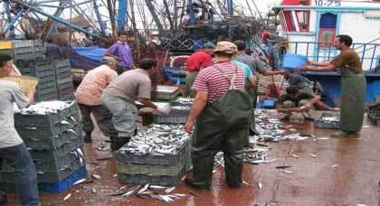 رئيس جمعية تجار السمك بالحسيمة: شباك سفن الجر تحتل أرصفة ميناء المدينة