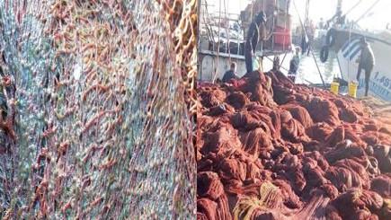 مادة لزجة تنتشر بعرض سواحل الناظور تشل قطاع صيد الأسماك السطحية
