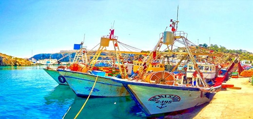 """صيادون يدقون ناقوس الخطر بسبب """"الشلل"""" الذي أصاب ميناء الحسيمة"""