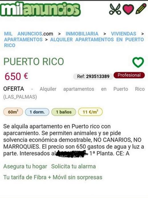 في إعلان على الإنترنيت.. صاحب شقة يفضل كرائها لأصحاب الحيوانات ويرفض المغاربة بإسبانيا