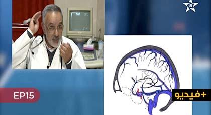 """الجهاز العصبي... موضوع حلقة اليوم من برنامج """"نصائح طبية"""" على الشاشة الأمازيغية"""