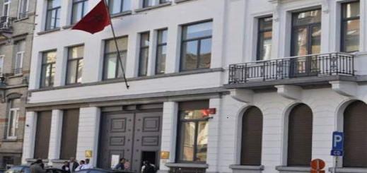 وزارة الخارجية تعين 15 قنصلا جديدا في 9 دول بينهما ألمانيا وبلجيكا وإسبانيا