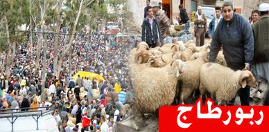 السوق الأسبوعي بأزغنغان يسجل تقاسم الكسابين والمواطنين لهموم إرتفاع أسعار أضاحي العيد والمواد العلفية