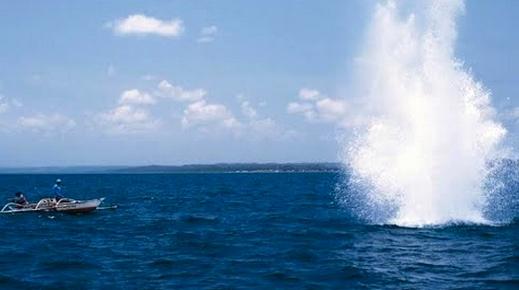 """جمعيات مهنية تدق ناقوس الخطر من استفحال الصيد بـ """"المتفجرات"""" بالدريوش والحسيمة"""