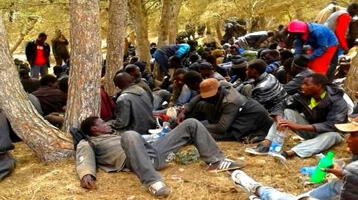 """الدريوش.. إحباط عمليتين للهجرة السرية وتوقيف 97 """"حراكا"""" في أقل من 48 ساعة بسواحل سيدي حساين"""