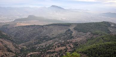 مواطن من أزغنغان يتهم حارس محمية كوروكو بالتواطؤ مع القناصين وقاطعي الأشجار
