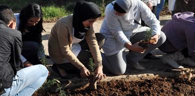 نادي ثوذاث يشرف على عملية غرس الأشجار بثانوية الشريف محمد أمزيان بالناظور