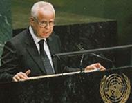 لوليشكي رئيسا لمجموعة العمل بمجلس الأمن حول عمليات حفظ السلم