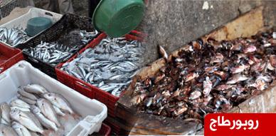 مهنيو سوق السمك بالعروي يعبرون عن سخطهم تجاه الجهات المسؤولة جراء وضعهم المزري