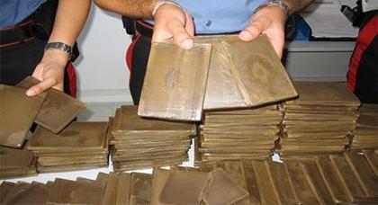 حجز أزبد من 70 كلغ من مخدر الشيرا داخل سيارة لنقل الأسماك بميناء طنجة