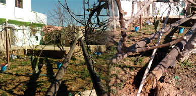 مواطن ببني شيكر يشتكي تماطل مكتب الكهرباء ببني انصار في إصلاح عمود كهربائي