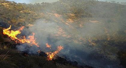 """اتهامات لمزارعي """"الكيف"""" بالوقوف وراء حرائق غابات شفشاون"""