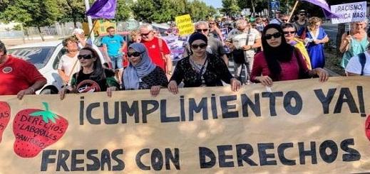 """محكمة إسبانية ترفض إعادة النظر في ملف """"انتهاكات"""" طالت عاملات مغربيات في حقول الفراولة"""