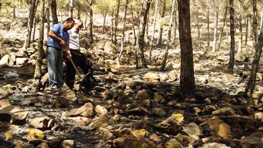 """اندلاع حريق مهول وسط غابة """"غورغو"""" نواحي الناظور يستنفر سلطات بني أنصار"""
