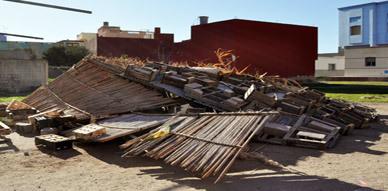 إتلاف وسقوط مجموعة من الأشجار والأعمدة الكهربائية جراء العاصفة التي اجتاحت مدينة الناظور