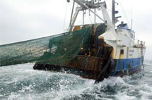 الأوروبيون يحصدون أسماك المغرب بأقل الأثمان
