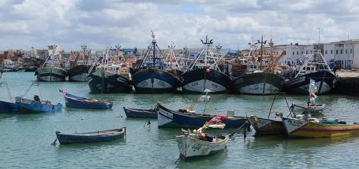 """الثروة السمكية بإقليم الناظور في """"خطر"""" أمام جشع كبار الصيادين"""
