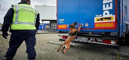 بلجيكا.. العثور على 8 مهاجرين داخل حاوية مبردة في ميناء زيبروغ وتوقيف 14 اخرين بينهم مغاربة في بروج