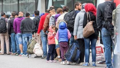 وزيرة الهجرة واللجوء البلجيكية : الظروف غير مواتية لإستقبال المهاجرين في فلاندرز