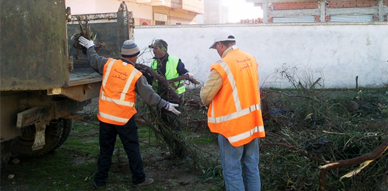 جمعية التضامن والتنمية بأولاد بوطيب بالناظور تغرس وتنظف محيط مدرسة الحي