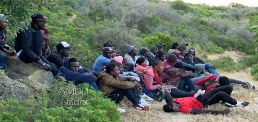 توقيف 40 مهاجرا ضواحي الناظور وجمعية حقوق تتدخل لإطلاق سراح مهاجر يحمل بطاقة إقامة