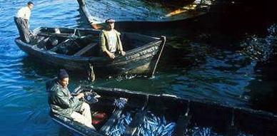 اعتقال صيادين مغربيين وتقديمهم للعدالة في مليلية المحتلة لمخالفتهم لقوانين مزعومة