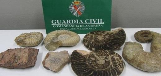 """السلطات الإسبانية تضبط لدى مسافر في مطار """"لافاكولا"""" حفريات أثرية مهربة من المغرب"""