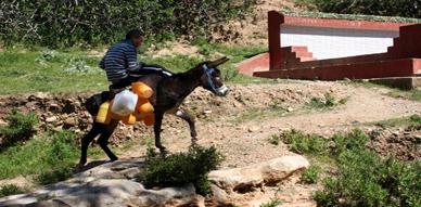 معاناة ساكنة قرية أنوال التابعة للجماعة القروية تليليت متواصلة مع شح  المياه