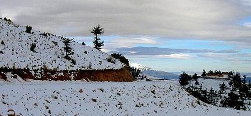 مرتفعات إقليمي الدريوش والحسيمة تكتسي حلة بيضاء بعد تساقطات مهمة من الثلوج