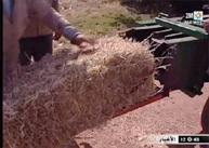 الفلاح المغربي في انتظار الحصاد