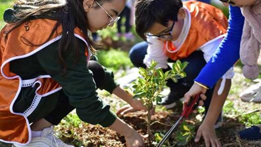 """أزيد من 600 طفل يستفيدون من ورشات قافلة """"التربية والبيئة"""" بتزطوطين"""