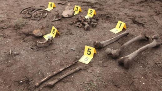 فلاح يعثر على عظام بشرية أثناء قيامه بعمليات للغرس ضواحي الحسيمة