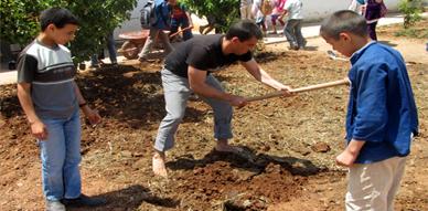 مجموعة مدارس تاوريرت بوستة بسلوان تنظم يوما بيئيا