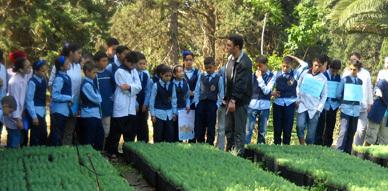 مدرسة الأم بأزغنغان تحتفل باليوم العالمي للبيئة