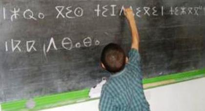 اليزمي يؤكد أن المغاربة في المهجر يعبرون دائما عن طلب شرعي في مجال تعلم اللغات الأم