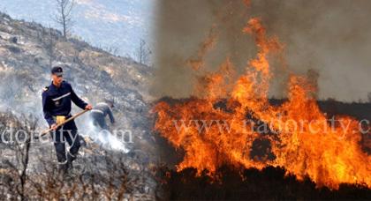 ألسنة النيران تواصل زحفها بغابة كبدانة وتلتهم أزيد من 150 هكتار من الغطاء الغابوي