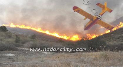 كارثة : النيران تلتهم أزيد من 1000 هكتار وتصل إلى منازل الساكنة بجماعة أولاد داوود الزخانين