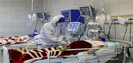 فيروس كورونا.. 81 حالة إصابة جديدة بالمغرب